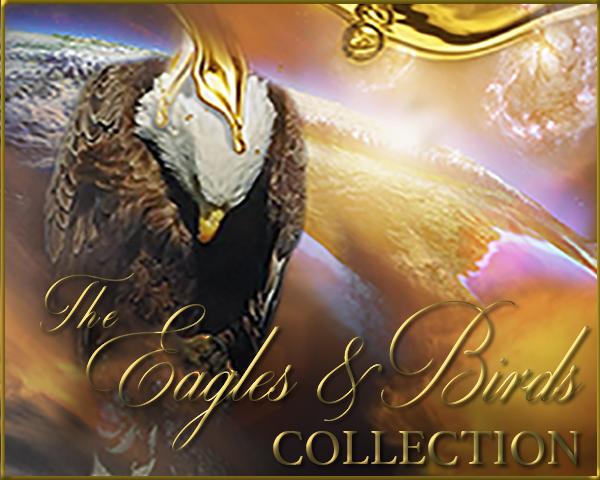 the-eagles-birds-collection-300-x-240