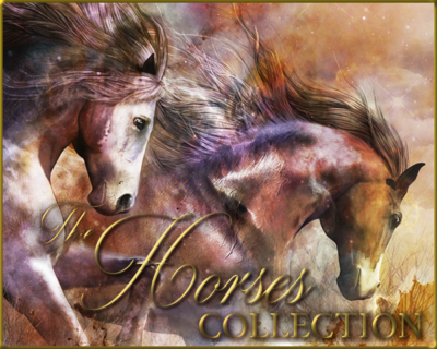 The Horses Collection Gallery