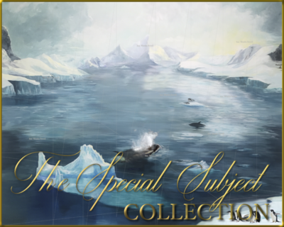 Special Subject Collection Gallery